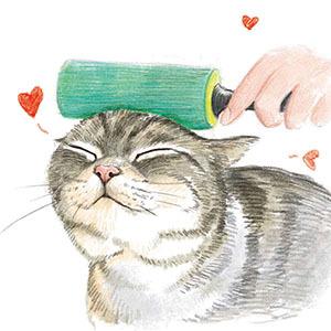 动物毛发简笔画