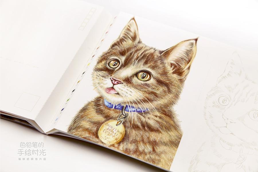 色铅笔的手绘时光 猫咪绘明信片组