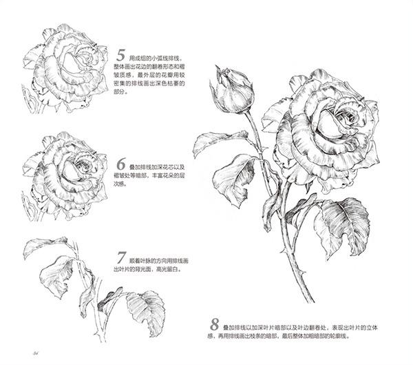 黑白花之绘